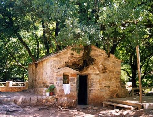 Peloponnese: The church of Agia Theodora with 17 trees on its roof!